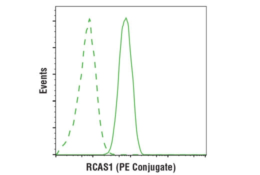 Flow cytometric analysis of Jurkat cells using RCAS1 (D2B6N) XP® Rabbit mAb (PE Conjugate) (solid line) compared to concentration-matched Rabbit (DA1E) mAb IgG XP<sup>®</sup> Isotype Control (PE Conjugate) #5742 (dashed line).
