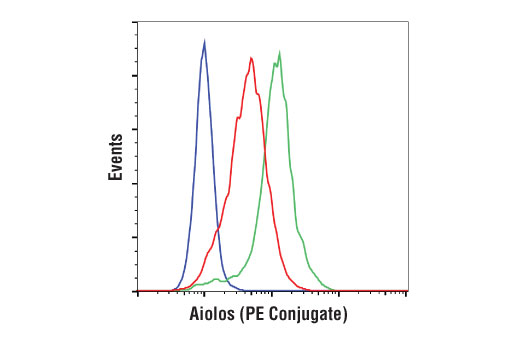 Monoclonal Antibody Flow Cytometry Aiolos