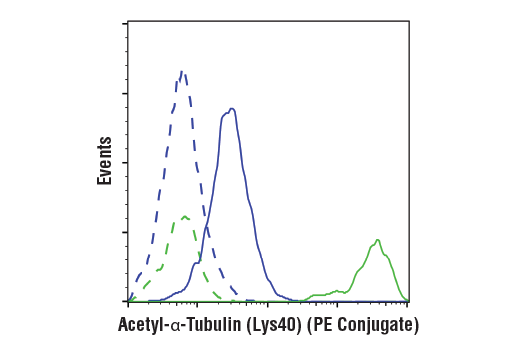 Flow cytometric analysis of Jurkat cells, untreated (blue) or treated with TSA #9950 (1uM, ON) using Acetyl-α-Tubulin (Lys40) (D20G3) XP<sup>®</sup> Rabbit mAb (PE Conjugate) (solid lines) or concentration-matched Rabbit (DA1E) mAb IgG XP<sup>®</sup> Isotype Control (PE Conjugate) #5742 (dashed lines).