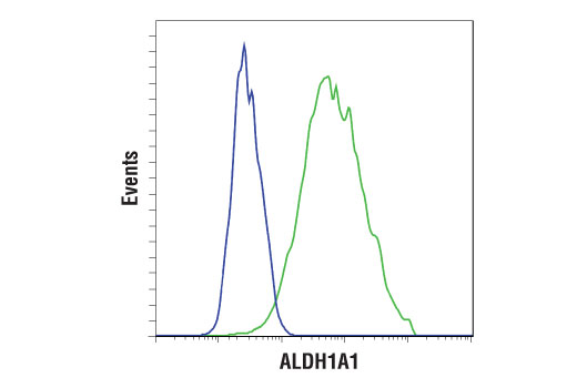 Flow cytometric analysis of HeLa (blue) and ACHN (green) cells using ALDH1A1 (D9J7R) XP® Rabbit mAb. Anti-rabbit IgG (H+L), F(ab')2 Fragment (Alexa Fluor® 488 Conjugate) #4412 was used as a secondary antibody.