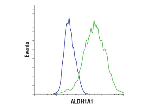 Monoclonal Antibody - ALDH1A1 (D9Q8E) XP® Rabbit mAb, UniProt ID P00352, Entrez ID 216 #54135, Flow Cytometry