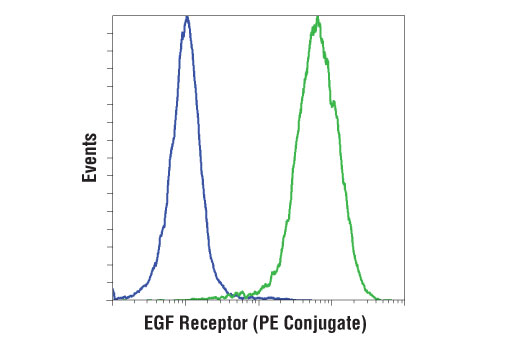 Flow Cytometry Image 1: EGF Receptor (D1D4J) XP® Rabbit mAb (PE Conjugate)