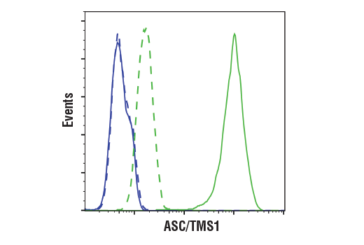 Flow cytometric analysis of Raw264.7 cells (blue) and J774A.1 cells (green) using ASC/TMS1 (D2W8U) Rabbit mAb (Mouse Specific) (solid lines) or a concentration-matched Rabbit (DA1E) mAb IgG XP<sup>® </sup>Isotype Control #3900 (dashed lines). Anti-rabbit IgG (H+L), F(ab')<sub>2 </sub>Fragment (Alexa Fluor<sup>® </sup>488 Conjugate) #4412 was used as a secondary antibody.