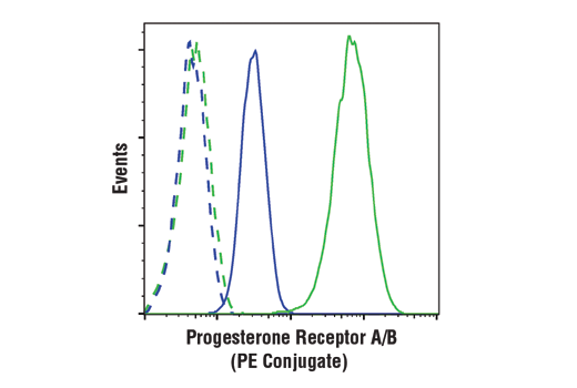 Flow cytometric analysis of MDA-MB-231 cells (blue) and T-47D cells (green) using Progesterone Receptor A/B (D8Q2J) XP® Rabbit mAb (PE Conjugate) (solid lines) or a concentration-matched Rabbit (DA1E) mAb IgG XP<sup>®</sup> Isotype Control (PE Conjugate) #5742 (dashed lines).