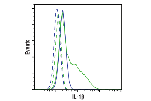 Flow cytometric analysis of Raw264.7 cells, untreated (blue) or treated with LPS #14011 (100ng/ml, 6 hrs; green) using IL-1β (D6D6T) Rabbit mAb (Mouse Specific) (solid lines) or concentration matched Rabbit (DA1E) mAb IgG XP<sup>®</sup> Isotype Control #3900 (dashed lines). Anti-rabbit IgG (H+L), F(ab')<sub>2</sub> Fragment (Alexa Fluor<sup>®</sup> 488 Conjugate) #4412 was used as a secondary antibody.