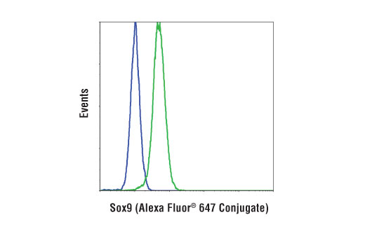 Flow cytometric analysis of HeLa cells (blue) and A-204 cells (green) using Sox9 (D8G8H) Rabbit mAb (Alexa Fluor<sup>®</sup> 647 Conjugate).