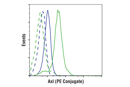 Flow cytometric analysis of Jurkat cells, (blue) and Hela cells (green) using Axl (C89E7) Rabbit mAb (PE Conjugate) (solid lines) or a concentration-matched Rabbit (DA1E) mAb IgG XP<sup>®</sup> Isotype Control (PE Conjugate) #5742 (dashed lines).