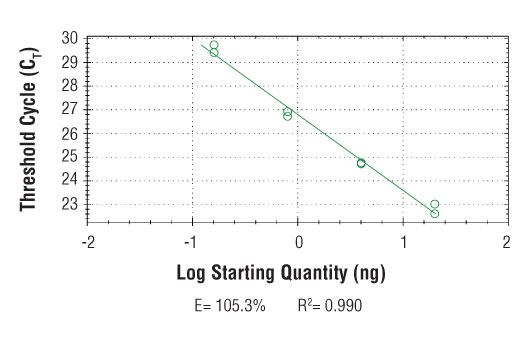 PCR Efficiency Image 1