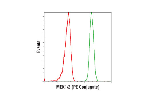 Flow cytometric analysis of Jurkat cells using MEK1/2 (D1A5) Rabbit mAb (PE Conjugate) (green) compared to Rabbit (DA1E) mAb IgG XP<sup>®</sup> Isotype Control (PE Conjugate) #5742 (red).