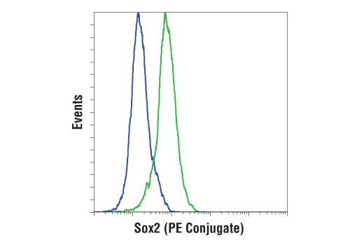 Flow cytometric analysis of 3T3 cells (blue) and F9 cells (green) using Sox2 (D9B8N) Rabbit mAb (PE Conjugate).