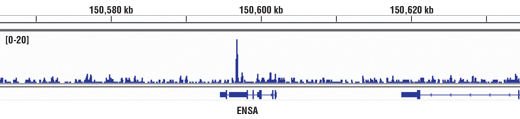 Monoclonal Antibody Chromatin Ip-Seq Dna-Dependent Atpase Activity
