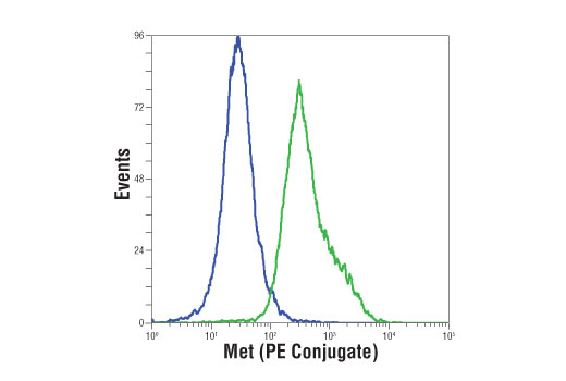 Flow cytometric analysis of K-562 (blue) and HT-29 (green) cells using Met (D1C2) XP<sup>®</sup> Rabbit mAb (PE Conjugate).