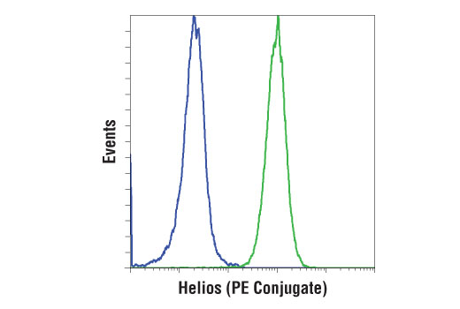 Flow Cytometry Image 1: Helios (D8W4X) XP® Rabbit mAb (PE Conjugate)