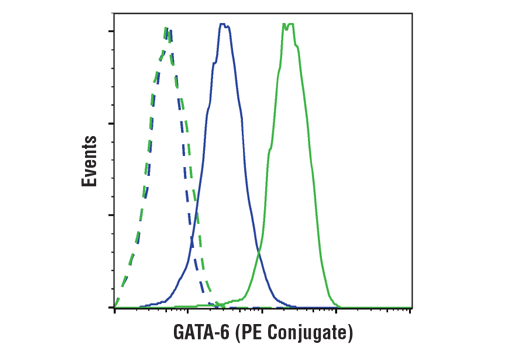 Monoclonal Antibody Flow Cytometry gata6
