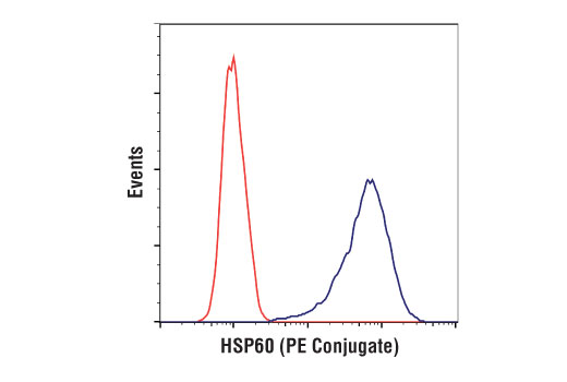 Flow cytometric analysis of HeLa cells using HSP60 (D6F1) XP® Rabbit mAb (PE Conjugate) (blue) compared to concentration-matched Rabbit (DA1E) mAb IgG XP<sup>® </sup>Isotype Control (PE Conjugate) #5742 (red).