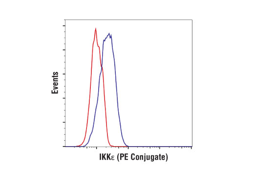 Monoclonal Antibody - IKKε (D61F9) XP® Rabbit mAb (PE Conjugate), UniProt ID Q14164, Entrez ID 9641 #85033, Antibodies to Kinases