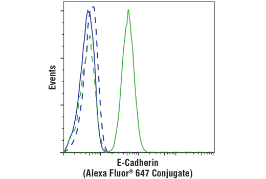 Flow cytometric analysis of HeLa cells (blue) and MCF7 cells (green) using E-Cadherin (4A2) Mouse mAb (Alexa Fluor<sup>®</sup> 647 Conjugate) (solid lines) or concentration-matched Mouse (MOPC-21) mAb IgG1 Isotype Control (Alexa Fluor<sup>®</sup> 647 Conjugate) #4843 (dashed lines).