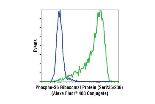 Flow cytometric analysis of Jurkat cells, untreated (green) or LY294002/wortmannin/U0126-treated (blue), using Phospho-S6 Ribosomal Protein (Ser235/236) (D57.2.2E) XP<sup>®</sup> Rabbit mAb (Alexa Fluor<sup>®</sup> 488 Conjugate).