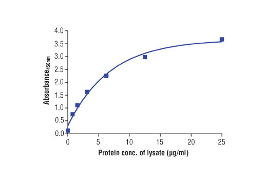 Figure 2. The relationship between protein concentration of lysates from ZR-75-1 cels and the absorbance at 450 nm as detected by the PathScan<sup>®</sup> Total MUC1 Sandwich ELISA Kit is shown. Unstarved ZR-75-1 cells (85% confluence) were harvested and then lysed.
