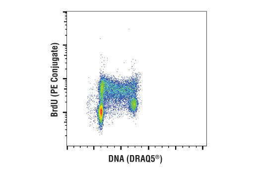Flow Cytometry Image 1: BrdU (Bu20a) Mouse mAb (PE Conjugate)