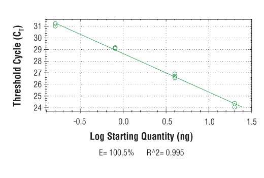 PCR Efficiency Image Product Gallery Navigation1