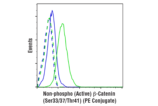 Flow cytometric analysis of K562 cells, untreated (blue) or treated with CHIR99021 (3 uM, 48 hr; green) using Non-phospho (Active) β-Catenin (Ser33/37/Thr41) (D13A1) Rabbit mAb (PE Conjugate) (solid lines) or concentration-matched Rabbit (DA1E) mAb IgG XP<sup>®</sup> Isotype Control (PE Conjugate) #5742 (dashed lines).