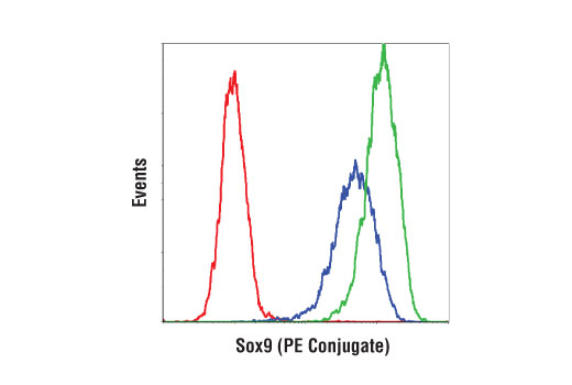 Flow cytometry analysis of HeLa cells using an isotype control (red) and Sox9 (D8G8H) Rabbit mAb (PE Conjugate) (blue) and A-204 cells (green) using Sox9 (D8G8H) Rabbit mAb (PE Conjugate).