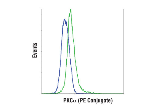 Flow cytometric analysis of SK-MEL-2 (blue) and SH-SY5Y (green) cells using PKCα (D7E6E) Rabbit mAb (PE Conjugate).