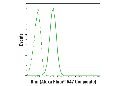 Flow cytometric analysis of Hela cells using Bim (C34C5) Rabbit mAb (Alexa Fluor® 647 Conjugate) (solid line) compared to concentration-matched Rabbit (DA1E) mAb IgG XP<sup>®</sup> Isotype Control (Alexa Fluor<sup>®</sup> 647 Conjugate) #2985 (dashed line).