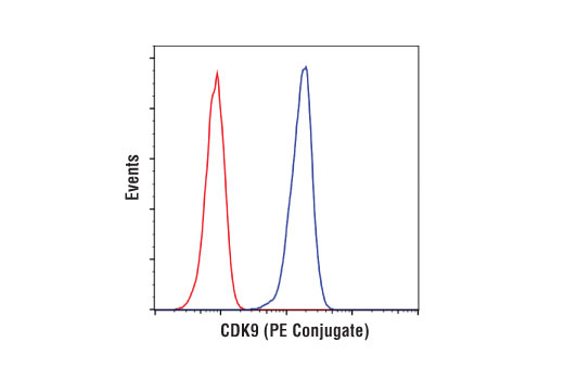 Flow cytometric analysis of Jurkat cells using CDK9 (C12F7) Rabbit mAb (PE Conjugate) (blue) compared to concentration-matched Rabbit (DA1E) mAb IgG XP<sup>® </sup>Isotype Control (PE Conjugate) #5742 (red).