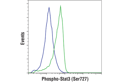 Flow cytometric analysis of human peripheral blood mononuclear cells, untreated (left) or TPA-treated #4174 (40nM, 15 minutes; right), using Phospho-Stat3 (Ser727) (D4X3C) Rabbit mAb. Anti-rabbit IgG (H+L), F(ab')2 Fragment (Alexa Fluor® 488 Conjugate) was used as a secondary antibody.