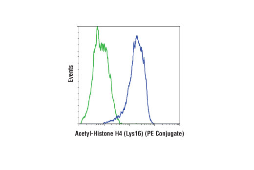 Flow cytometric analysis of HeLa cells, untreated (green) or treated with Trichostatin A (TSA) #9950 (400 nM, 20 hr; blue) using Acetyl-Histone H4 (Lys16) (E2B8W) Rabbit mAb (PE Conjugate).