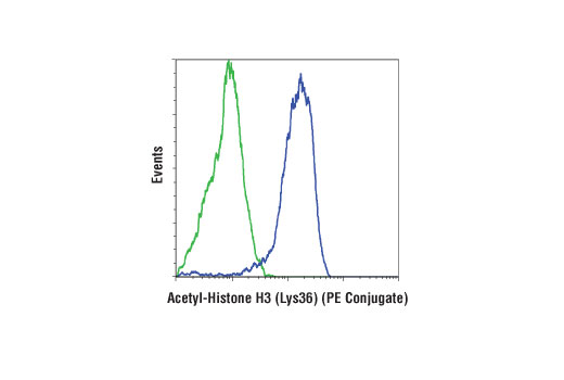 Flow cytometric analysis of HeLa cells, untreated (blue) or treated with Trichostatin A (TSA) #9950 (400 nM, 20 hr; green) using Acetyl-Histone H3 (Lys36) (D9T5Q) Rabbit mAb (PE Conjugate).