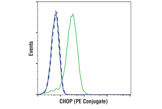 Flow cytometric analysis of HeLa cells, untreated (blue) or treated with Tunicamycin #12819 (2 μg/ml, 8 hr; green), using CHOP (L63F7) Mouse mAb (PE Conjugate) (solid lines) or concentration-matched Mouse (G3A1) mAb IgG1 Isotype Control (PE Conjugate) #6899 (dashed lines).