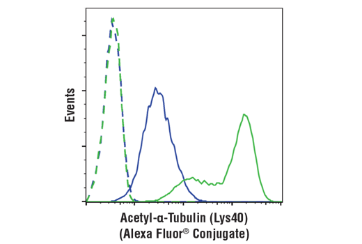 Flow cytometric analysis of Hela cells, untreated (blue) or treated with Trichostatin A #9950 (1 uM, ON; green) using Acetyl-α-Tubulin (Lys40) (D20G3) XP® Rabbit mAb (Alexa Fluor® 488 Conjugate) (solid lines) or concentration-matched Rabbit (DA1E) mAb IgG XP<sup>®</sup> Isotype Control (Alexa Fluor<sup>®</sup> 488 Conjugate) #2975 (dashed lines).