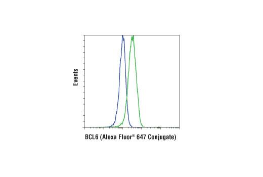 Monoclonal Antibody - BCL6 (D4I2V) XP® Rabbit mAb (Alexa Fluor® 647 Conjugate), UniProt ID P41182, Entrez ID 604 #41194 - #41194