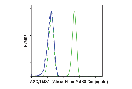 Flow cytometric analysis of Raw264.7 cells (blue) and J774A.1 cells (green) using ASC/TMS1 (D2W8U) Rabbit mAb (Mouse Specific) (Alexa Fluor<sup>®</sup> 488 Conjugate) (solid lines) or a concentration-matched Rabbit (DA1E) mAb IgG XP<sup>®</sup> Isotype Control (Alexa Fluor<sup>®</sup> 488 Conjugate) #2975 (dashed lines).