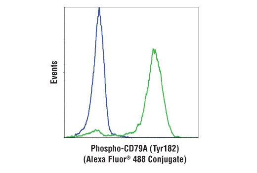 Flow Cytometry Image 1: Phospho-CD79A (Tyr182) (D1B9) Rabbit mAb (Alexa Fluor® 488 Conjugate)