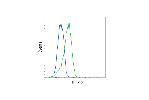 Monoclonal Antibody Flow Cytometry Oxygen Homeostasis
