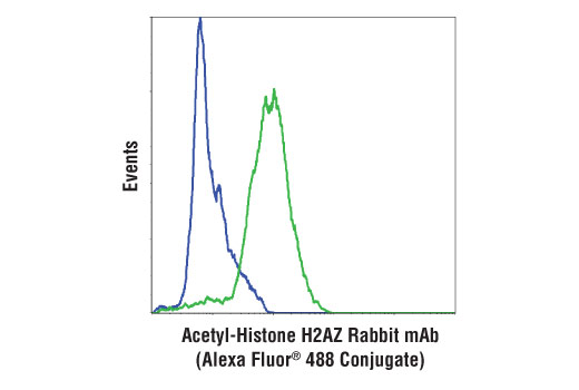 Flow cytometric analysis of HeLa cells, untreated (blue) or treated with Trichostatin A (TSA) #9950 (1 μM, 18 hr; green), using Acetyl-Histone H2AZ (Lys4/Lys7) (D3V1I) Rabbit mAb (Alexa Fluor<sup>®</sup> 488 Conjugate).