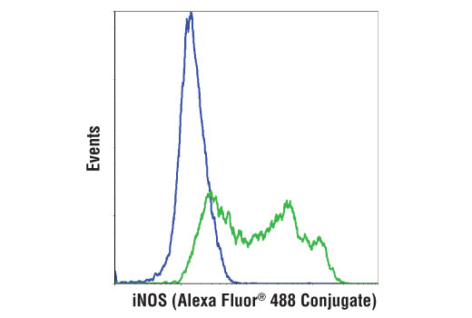 untreated blue or lipopolysaccharides lps 14011 treated 1 gml overnight green using inos d6b6s rabbit mab alexa fluor 488 conjugate