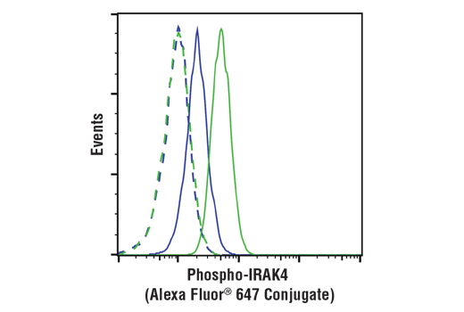 Flow cytometric analysis of KARPAS-299 cells, untreated (blue) or treated with hIL-1β #8900 and Calyculin A #9902 (100 ng/ml and 100 nM, 15 min; green), using Phospho-IRAK4 (Thr345/Ser346) (D6D7) Rabbit mAb (Alexa Fluor® 647 Conjugate) (solid lines) or concentration-matched Rabbit (DA1E) mAb IgG XP® Isotype Control (Alexa Fluor® 647 Conjugate) #2985 (dashed lines). Cell Line Source: Dr Abraham Karpas at the University of Cambridge.