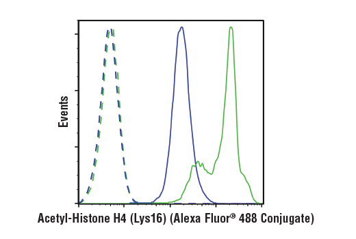 Flow cytometric analysis of Hela cells, untreated (blue) or treated with Trichostatin A (1uM, ON; green) using Acetyl-Histone H4 (Lys16) (E2B8W) Rabbit mAb (Alexa Fluor® 488 Conjugate) (solid lines) or concentration-matched Rabbit (DA1E) mAb IgG XP<sup>®</sup> Isotype Control (Alexa Fluor<sup>®</sup> 488 Conjugate) #2975 (dashed lines).