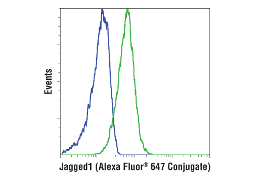 Flow cytometric analysis of Jurkat cells (blue) and MKN-45 cells (green) using Jagged1 (D4Y1R) XP<sup>®</sup> Rabbit mAb (Alexa Fluor® 647 Conjugate).