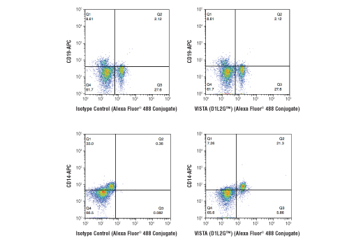 Flow Cytometry - VISTA (D1L2G™) XP® Rabbit mAb (Alexa Fluor® 488 Conjugate)