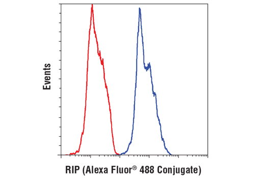 Flow cytometric analysis of MCF7 cells using RIP (D94C12) XP<sup>®</sup> Rabbit mAb (blue) compared to a concentration-matched Rabbit (DA1E) mAb IgG XP<sup>®</sup> Isotype Control (Alexa Fluor<sup>®</sup> 488 Conjugate) #2975 (red).