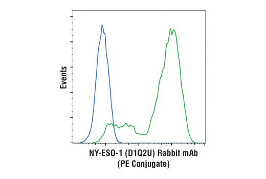 Flow Cytometry Image 1: NY-ESO-1 (D1Q2U) Rabbit mAb (PE Conjugate)