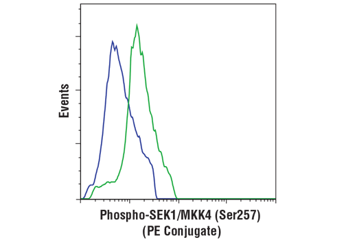 Monoclonal Antibody - Phospho-SEK1/MKK4 (Ser257) (C36C11) Rabbit mAb (PE Conjugate), UniProt ID P45985, Entrez ID 6416 #59056