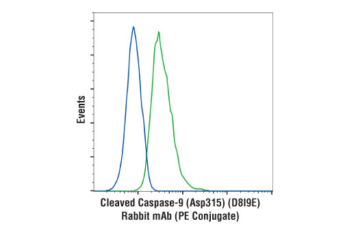 Flow cytometric analysis of Jurkat cells, untreated (blue) or treated with Etoposide #2200 (25 μM, overnight; green), using Cleaved Caspase-9 (Asp315) (D8I9E) Rabbit mAb (PE Conjugate).