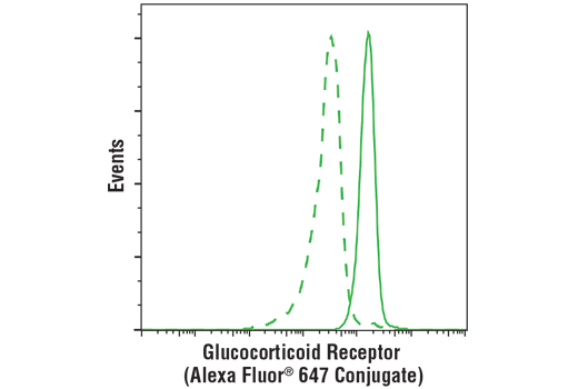 Flow cytometric analysis of human whole blood using Glucocorticoid Receptor (D8H2) XP<sup>®</sup> Rabbit mAb (Alexa Fluor<sup>®</sup> 647 Conjugate) (solid line) compared to concentration-matched Rabbit (DA1E) mAb IgG XP<sup>®</sup> Isotype Control (Alexa Fluor<sup>®</sup> 647 Conjugate) #2985 (dashed line). Analysis was performed on CD3+ lymphocytes.